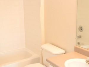 C3 Bath1